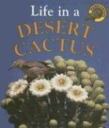 Download Life in a Desert Cactus (Microhabitats)