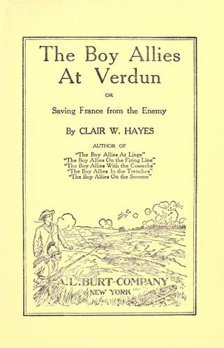The boy allies at Verdun, or, Saving France from the enemy